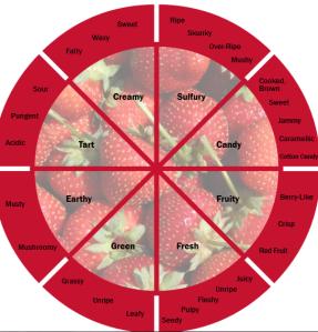 http://www.fona.com/sites/default/files/flavor-wheels/strawberry-flavor-wheel.pdf