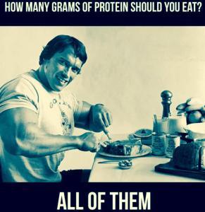 bulkingbro-Arnold